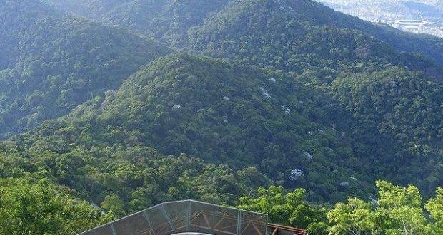 floresta-da-tijuca-mathieu-marquer